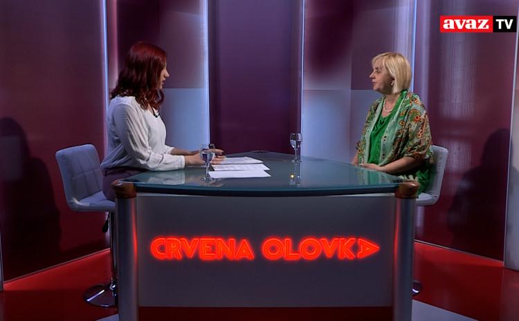 Rudić: Političari podnose najviše tužbi za klevetu protiv medija i novinara